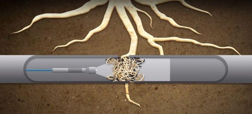 wycinananie i usuwanie korzeni z rur kanalizacyjnych kaszuby żukowo kartuzy banino chwaszczyno kolbudy